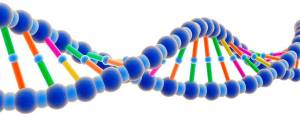 DNA-New