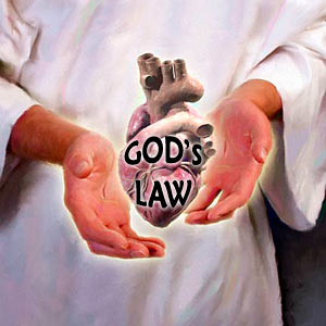 gods-law-on-heart